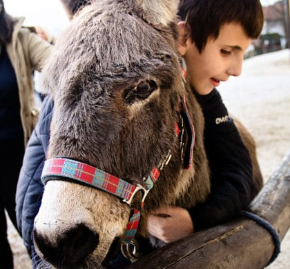 Unsere Spende: Kinderglück auf Pferderücken