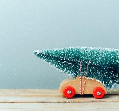 Green IT Tipps für eine nachhaltige Weihnachtszeit