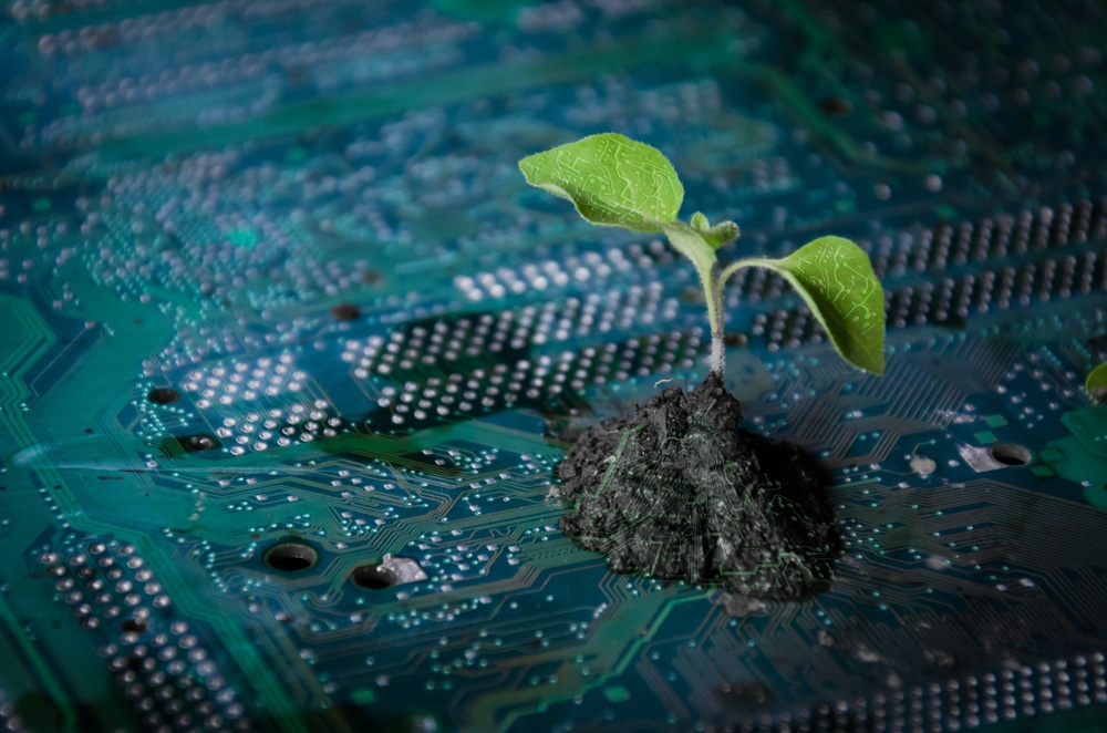 Künstliche Intelligenz – die Lösung für mehr Umweltschutz?